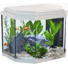 Aquatlantis Calypso 40 Аквариум 27л, 40х25х34см ,LED-светильник 2,4w, Фильтр Mini Biobox 2